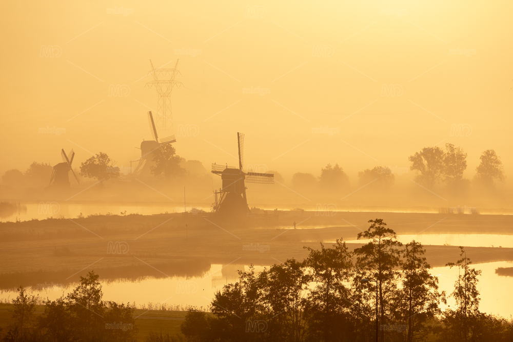Historic old windmills on dykes in a foggy morning in the Doespolder in the village of Leiderdorp in the Netherlands. On the background a electricity pole.