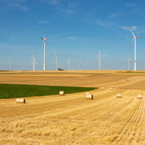 Beautiful yellow farmland landscape with hay bales and white wind turbines with red stripes generating electricity on a bright blue little cloudy sky.