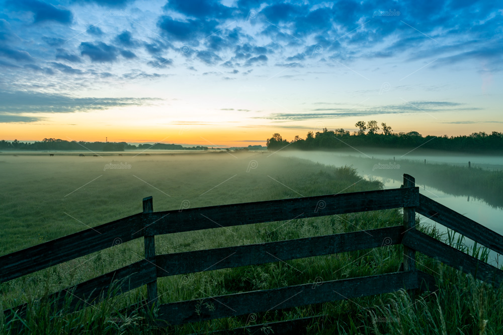 Foggy sunrise over the Sassenheim meadows along the Kagerplassen in the Netherlands.