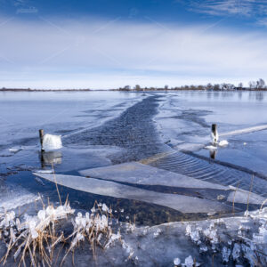 A winter landscape with a hole on the Kagerplassen in the South Holland municipality of Warmond in the Netherlands.